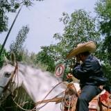 backlab-mexico-tour-2007-mnd_-090