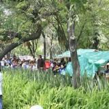 backlab-mexico-tour-2007-thomas-055
