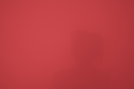 ganzfeld seline rot ju